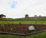 arboretum-wojsc582awice-otwarcie-polskiego-ogrodu-milenijnego-maj-2019-09