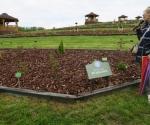 arboretum-wojsc582awice-otwarcie-polskiego-ogrodu-milenijnego-maj-2019-10