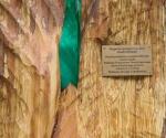 zjazdptd-szczecin2012-11