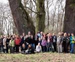 Weekend: wierzby w Poznaniu, Kórnik, Rogalin; 11-12 kwietnia 2015 (fot. K. Borkowski)