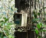 drzewapdanglii-iv-2015-26