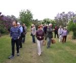 Zwiedzanie kórnickiej kolekcji lilaków, 6 maja 2014 (fot. Katarzyna Broniewska i Krzysztof Borkowski)