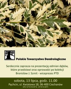 odmiany-debow