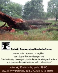 drzewa-grozace-wywroceniem