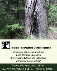 drzewa-zmodyfikowane-w-PB
