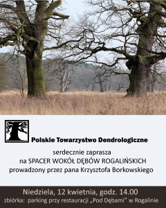spacer-Rogalin-2015