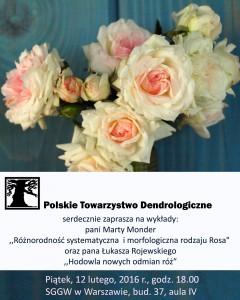 Spotkanie różane 12 II