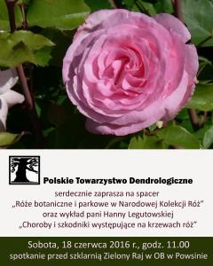 Róże: wyklad i spacer w Powsinie