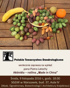 "Plakat: Aktinidia - roślina ""made in China"""