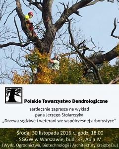 Drzewa sędziwe - i weterani we współczesnej arborystyce