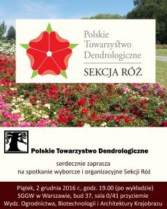 Sekcja róż - plakat