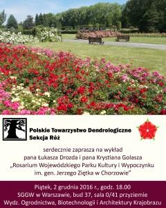 Sekcja róż - rosarium w Chorzowie