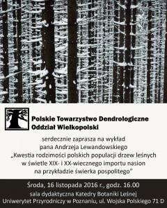 Plakat: Świerk rodzimy nie rodzimy