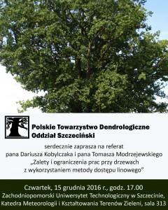 Zalety i ograniczenia prac przy drzewach z wykorzystaniem metody dostępu linowego