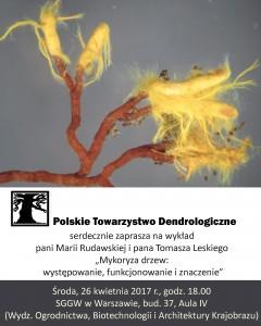 """Wykład  """"Mykoryza drzew: występowanie, funkcjonowanie i znaczenie"""" - plakat."""
