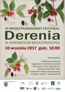 Festiwal Derenia - Bolestraszyce 2017