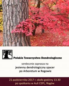 Plakat - spacer w Rogowie