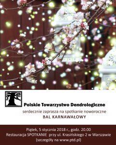 Plakat - Bal Karnawałowy 2017-2018
