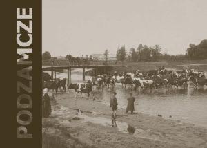 Album fotografii (autorstwa Stanisława Bogackiego) ze szkółek i dóbr Zamoyskich w Podzamczu koło Maciejowic, z ostatnich lat przed wybuchem I wojny