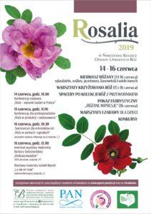 Plakat - Rosalia 2019