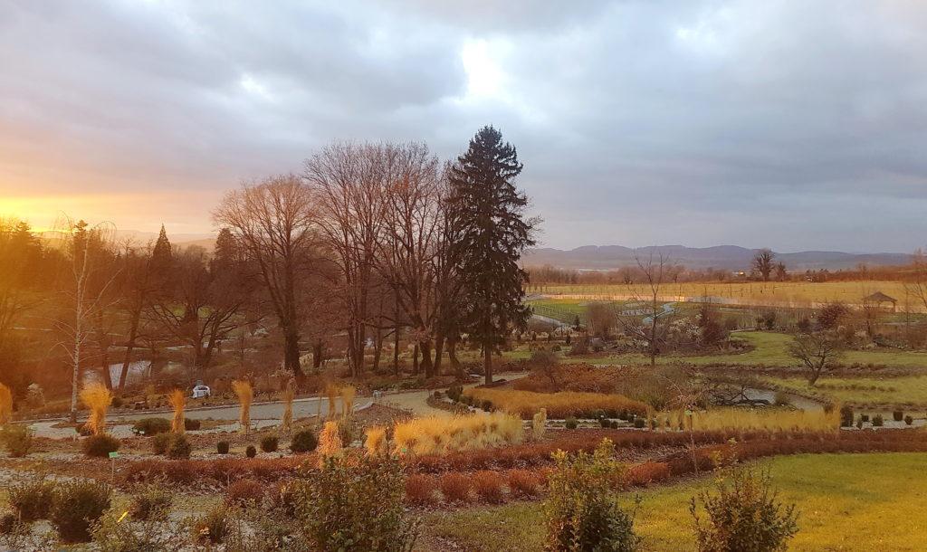 Zachód słońca w Arboretum Wojsławice (nietypowa zima) - fot. Hanna Grzeszczak-Nowak